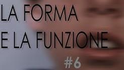"""6 – Corso per logopedisti e osteopati """"LA FORMA E LA FUNZIONE"""""""
