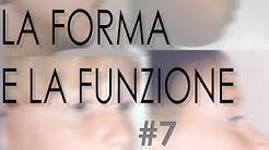 """7 – Corso per logopedisti e osteopati """"LA FORMA E LA FUNZIONE"""""""