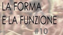 """10 – Corso per logopedisti e osteopati """"LA FORMA E LA FUNZIONE"""""""